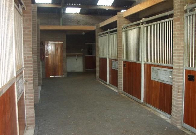 paardenhotel 2.JPG